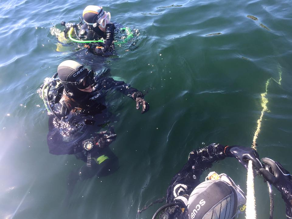 buceo 0